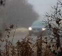 Погода в Туле 13 ноября: облачно, местами туман, до +8
