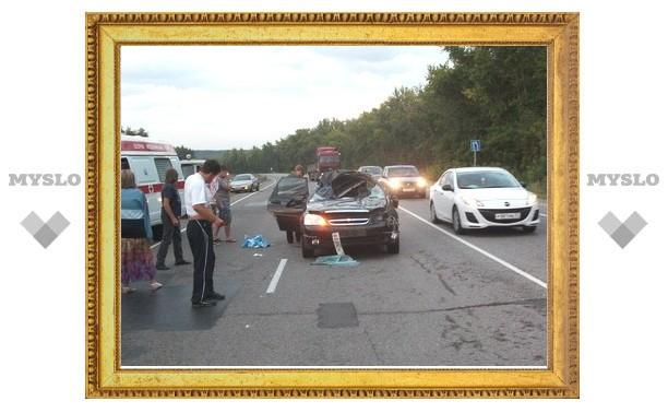 Лось на дороге стал причиной автокатастрофы