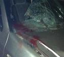 Под Тулой насмерть сбили подростка