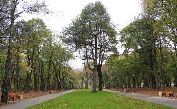 В Рогожинском парке обнаружили гранату времён Великой Отечественной войны