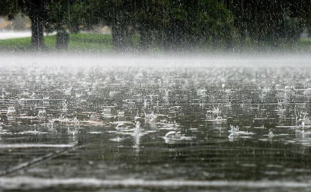 Метеопредупреждение: за день в Тульской области выпадет до 33 мм осадков