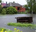 Жители села Дедилово получили компенсации за затопленные участки. 100 рублей за сотку