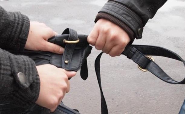 В Советском районе полицейские по горячим следам задержали двух грабителей