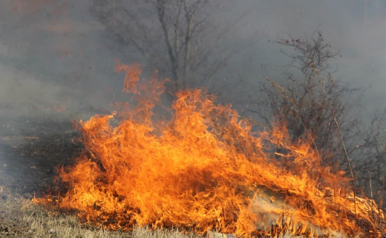 Тульские пожарные ведут космический мониторинг пала травы и пожаров