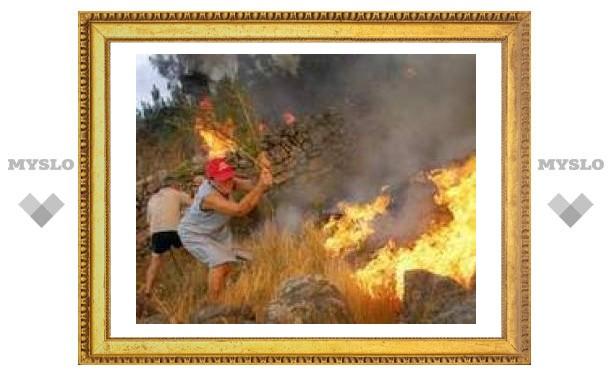В Калифорнии пожар уничтожил 165 строений