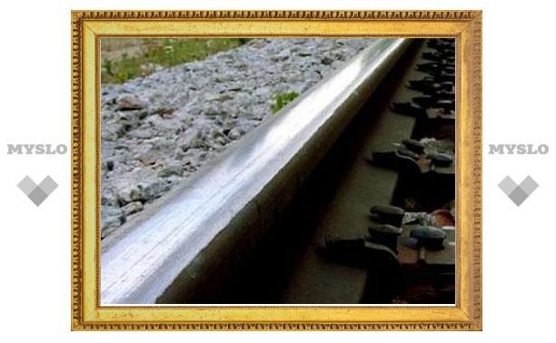 Под Тулой поезд сбил женщину