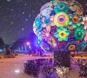 В Центральном парке в новогодние каникулы появится специальная зона с кострами