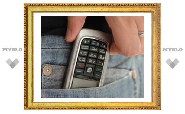 В Тульской области пойманы телефонные воры