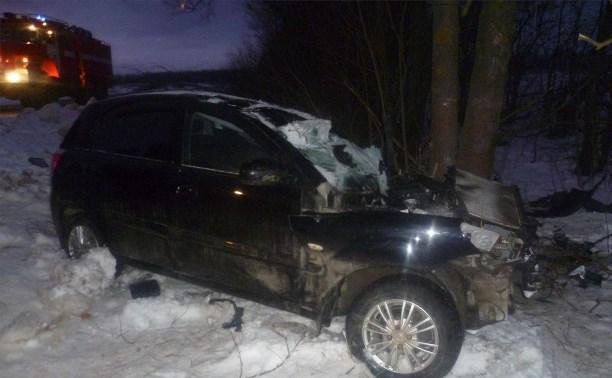 В Ясногорском районе водитель «Киа» врезался в дерево