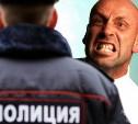 Пьяный житель Узловой избил двух полицейских