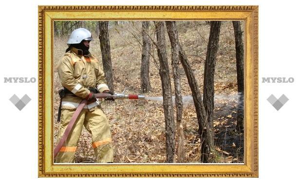 Пожароопасный сезон прошел без происшествий