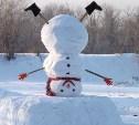Росгидромет рассказал, какой будет зима