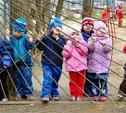 В детских садиках Плавска установят пластиковые окна
