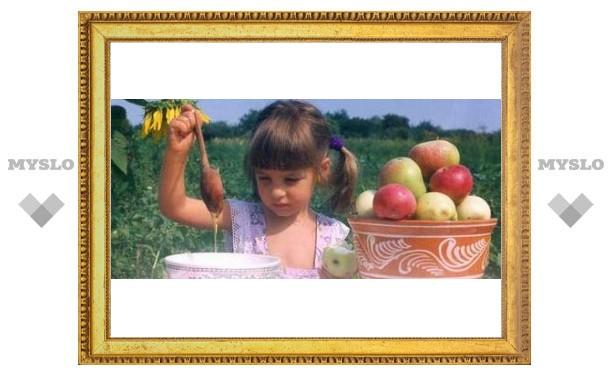 Туляки празднуют Яблочный Спас