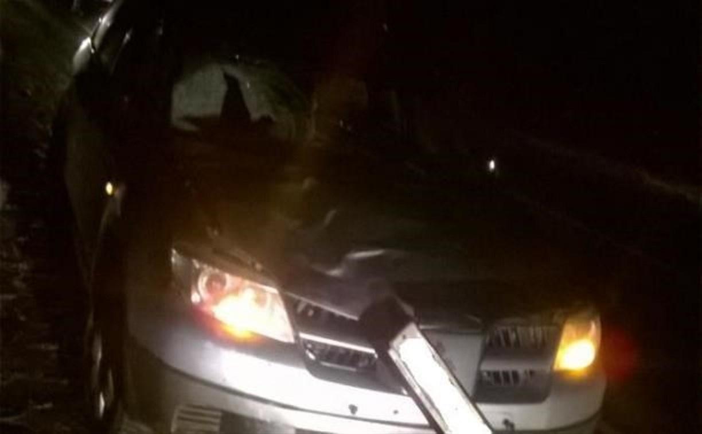 В ДТП на М4 погиб пешеход