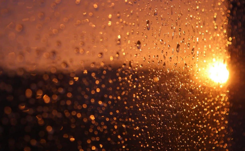 Погода в Туле 9 июня: дождь с грозой и ветер