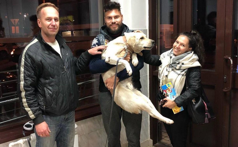 Туляки помогли арсенальцу Максиму Беляеву найти бездомного пса