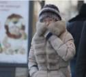 К концу осени в Тульской области похолодает до -16