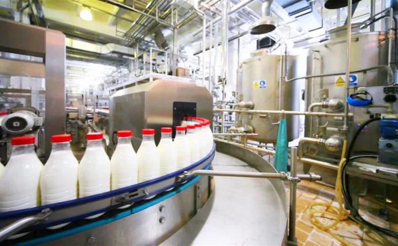 Российским школьникам будут бесплатно давать молоко