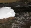 Коммунальная авария в Туле: повреждены два участка трубопровода