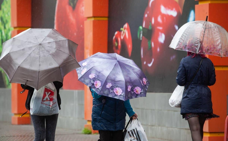 Погода в Туле 25 апреля: мокро, ветрено, до +11