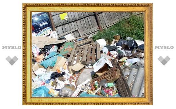 Центр Тулы тонет в мусоре
