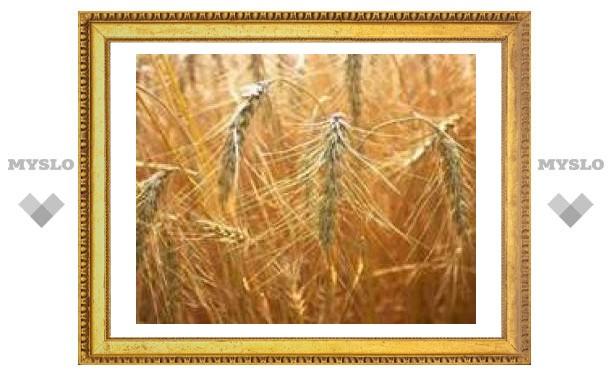 Тульские аграрии перевыполнили план