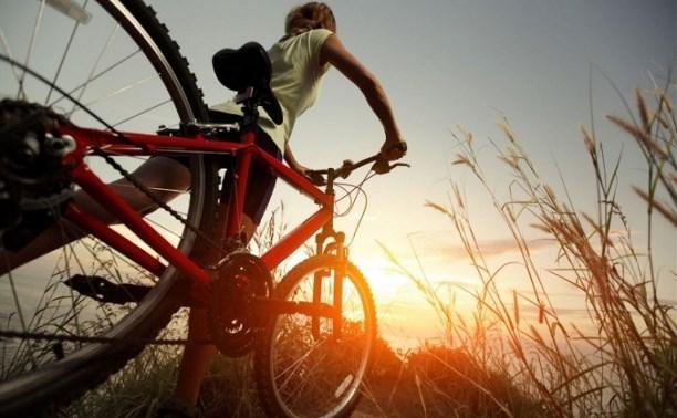Двое пьяных мужчин отобрали у тулячки два велосипеда