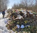 Свалка гнилых овощей под Тулой: в отходах – квитанции московской фирмы