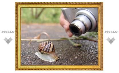 Туляков приглашают на «ФотоОхоту»