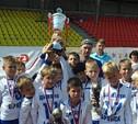 В Туле завершился межрегиональный финал турнира «Локобол-2013-РЖД»