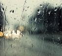 Выходные в Тульской области будут теплыми и дождливыми