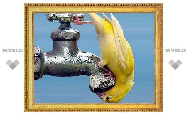 31 октября в части Тулы не будет воды