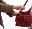 В Туле причиненный вором-«сумочником» ущерб превысил 180 тысяч рублей
