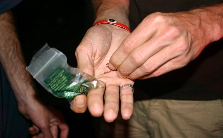 Сотрудников ночных клубов могут обязать бороться с наркоторговлей