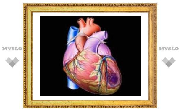 Пластырь восстановит сердечную мышцу после инфаркта