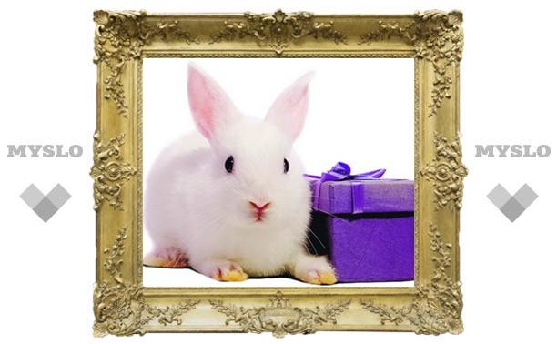 Какие сюрпризы готовит год Кролика