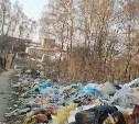 Березовую рощу на Косой Горе очистят от мусора