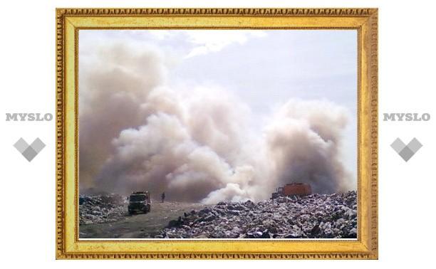 На минувшей неделе в Туле произошло 46 возгораний мусора