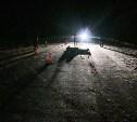 В Чернском районе водитель переехал лежащего на дороге мужчину