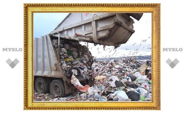 Через 2-3 года в Туле некуда будет девать мусор