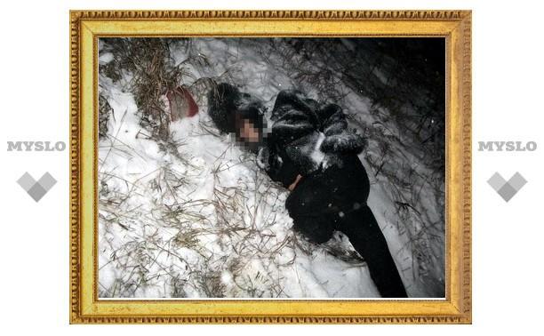 Под Тулой насмерть сбили пешехода