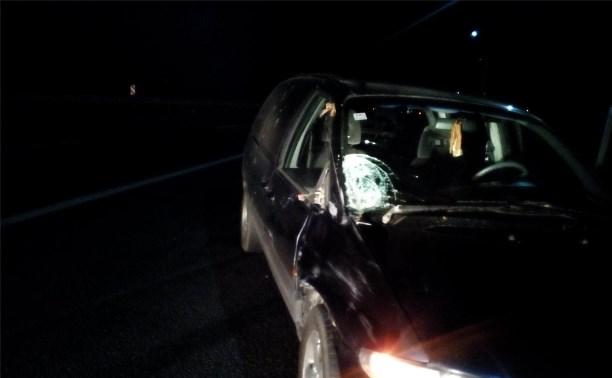 Ночью на трассе «Дон» водитель насмерть сбил пешехода