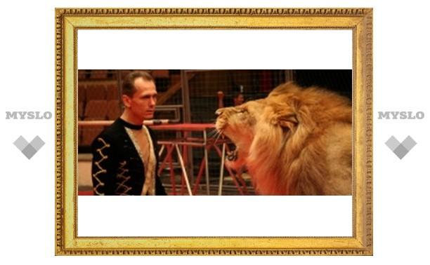 Туляки увидят львов под куполом цирка