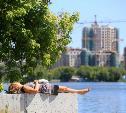 Погода в Туле 6 августа: без осадков, северный ветер и жара