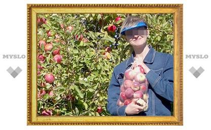 Под Тулой поймали «яблочных» воров