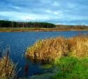 Продавшего пруд чиновника оштрафовали на 40 тысяч рублей