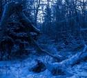 Жительница села Хомяково: «Моя дочь ходит в школу 4 км через темный лес!»