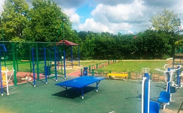 В поселке Новогуровский Тульской области появилась новая спортивная площадка