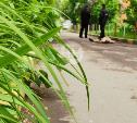 Подозреваемый в убийстве на ул. Демидовской в Туле признался в преступлении